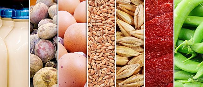 Экспорт продовольствия подскочил больше чем на 20%