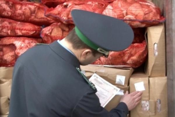 На посту Таганрогской таможни задержали 20 тонн санкционного мяса