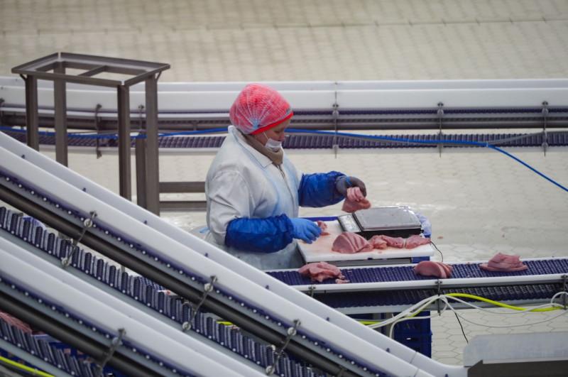 На Ставрополье построят крупнейший в России комплекс по производству баранины