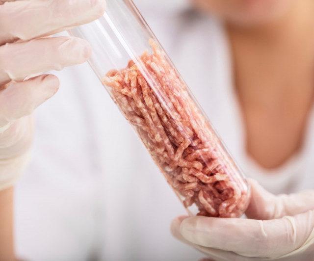 Станет ли искусственное мясо популярным в России